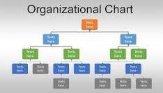 org chart 1.jpg